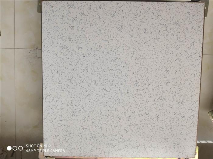 兰花纹陶瓷防静电地板